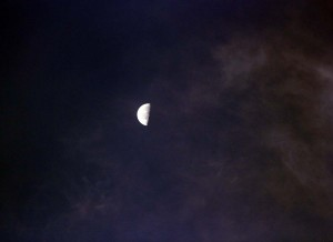 2011 08 21_5606